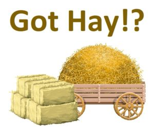 Picture of hay bales with writing that says: Got Hay?
