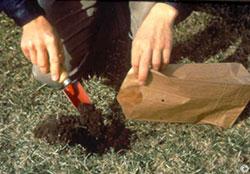 Soil being sampled image.